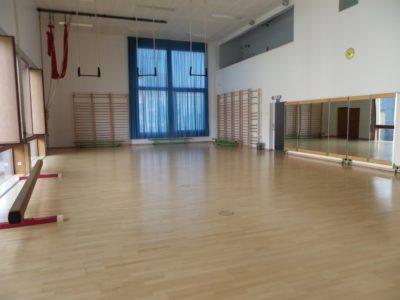 <p>Les dimensions affectées à la pratique sportive sont de 18,6./8,94 m, la hauteur sous plafond est de 5,90 m</p>
